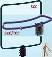 The ITER Correction Coils: an arrangement of six 7x8 metre side coils and twelve 3x7 metre top/bottom coils (compare to the man-sized figure at bottom right). (Click to view larger version...)