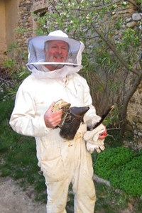 An amateur beekeeper, Bruno Couturier, of AIF, transferred the swarm to his place on the lavender-covered plateau of Valensole. (Click to view larger version...)
