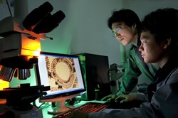 Researchers investigating the micro-structure of a cross-section of Nb3Sn superconducting strand after heat treatment.(ITER Korea, © Peter Ginter) (Click to view larger version...)