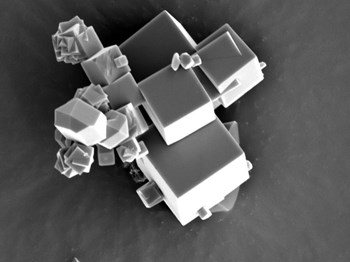 A sieve for molecules: The crystals of the metal-organic compound can be seen at a magnification of more than X6000 under the scanning electron microscope. © MPI for Intelligent Systems (Click to view larger version...)